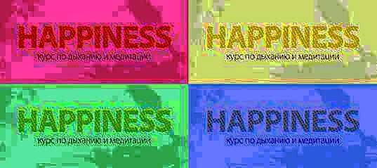 """Yoga-Festival """"Happiness"""" findet im Sommer im Resort """"Rose Farm"""" in Sotschi statt"""