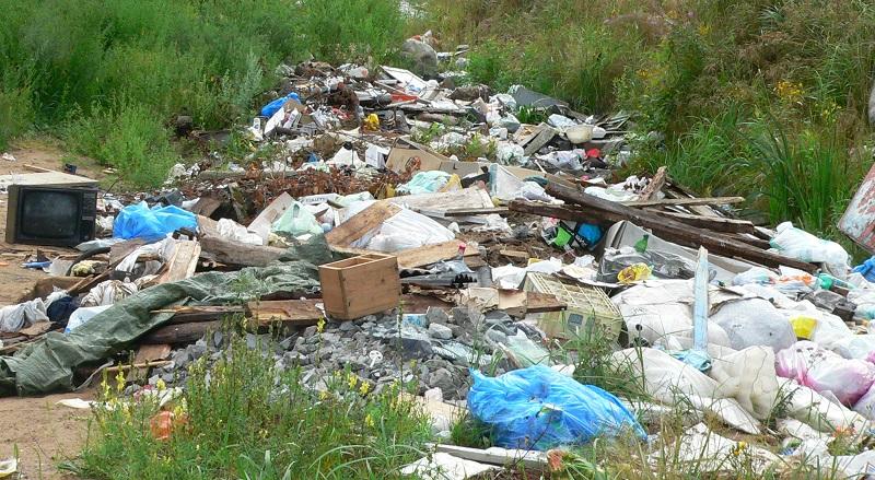 Freiwillige säubern Russlands Natur vom Müll